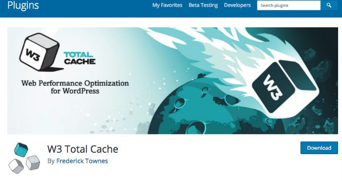 cache wordpress
